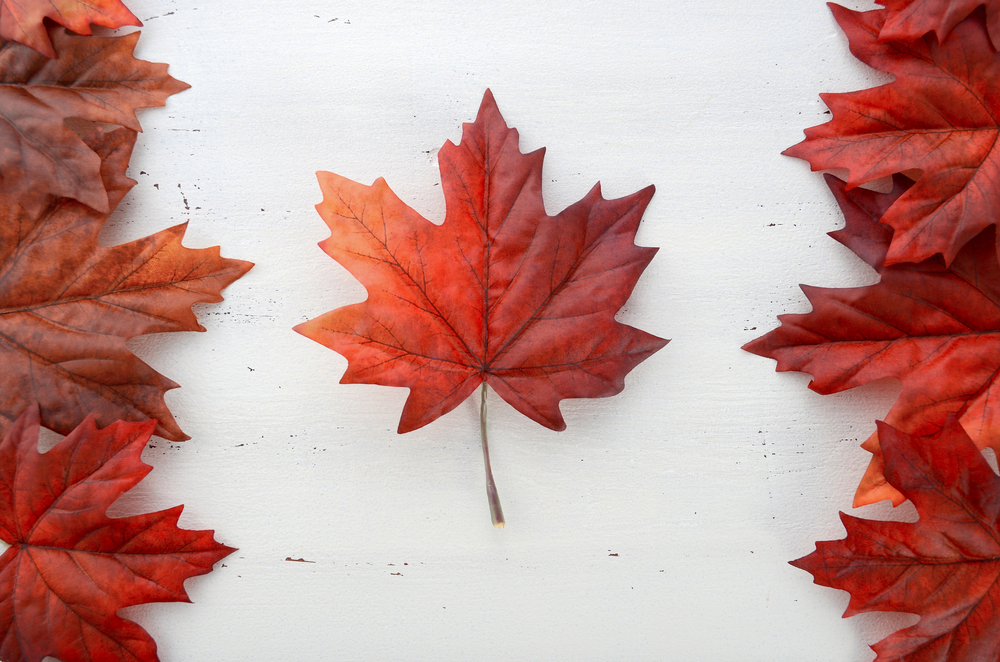 Happy Canada Day From The MeloTel Team!